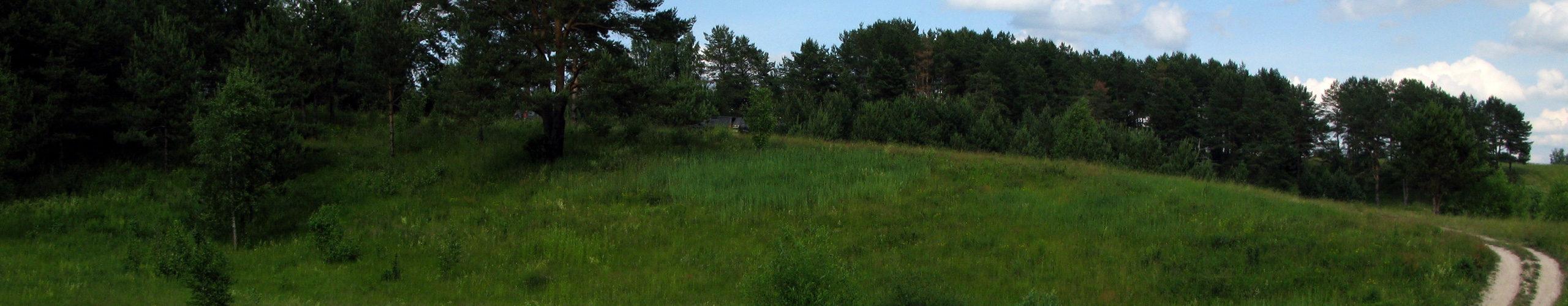 Супоневское сельское поселение